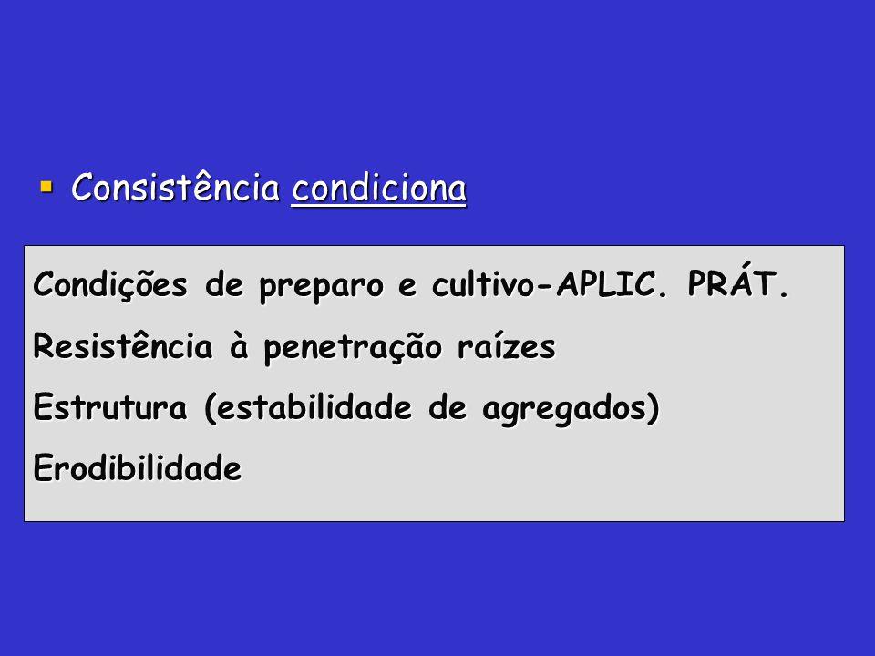 Consistência condiciona Consistência condiciona Condições de preparo e cultivo-APLIC. PRÁT. Resistência à penetração raízes Estrutura (estabilidade de