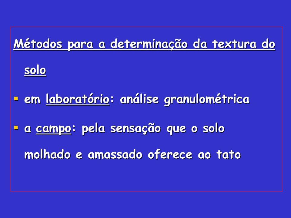Métodos para a determinação da textura do solo em laboratório: análise granulométrica em laboratório: análise granulométrica a campo: pela sensação qu