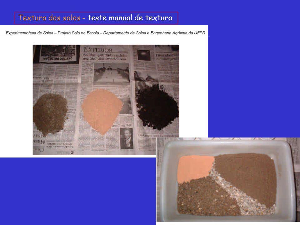 Textura dos solos - teste manual de textura