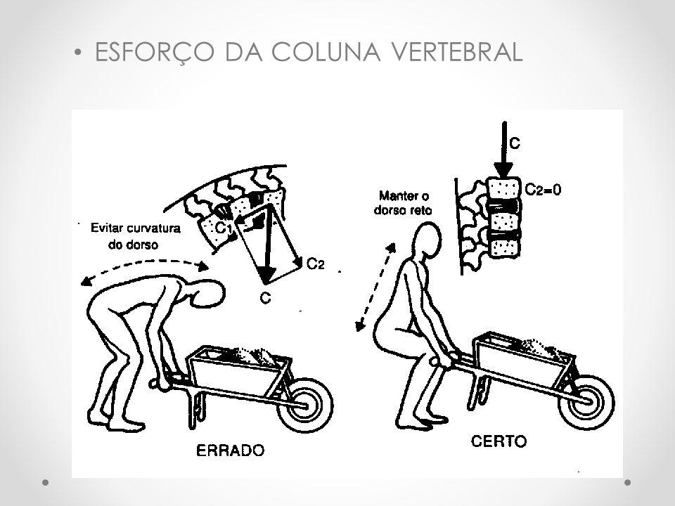 ESFORÇO DA COLUNA VERTEBRAL