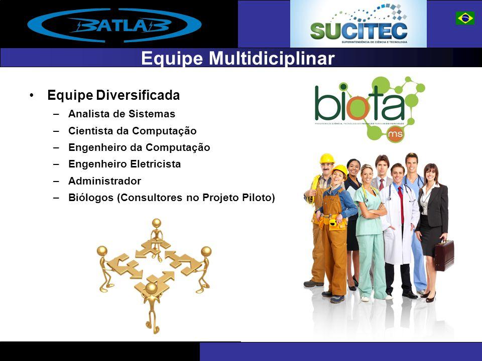 Equipe Multidiciplinar Equipe Diversificada –Analista de Sistemas –Cientista da Computação –Engenheiro da Computação –Engenheiro Eletricista –Administ