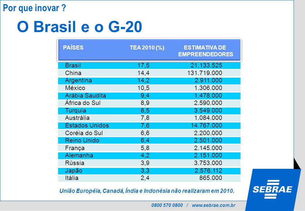 0800 570 0800 / www.sebrae.com.br O Brasil e o G-20 União Européia, Canadá, Índia e Indonésia não realizaram em 2010.