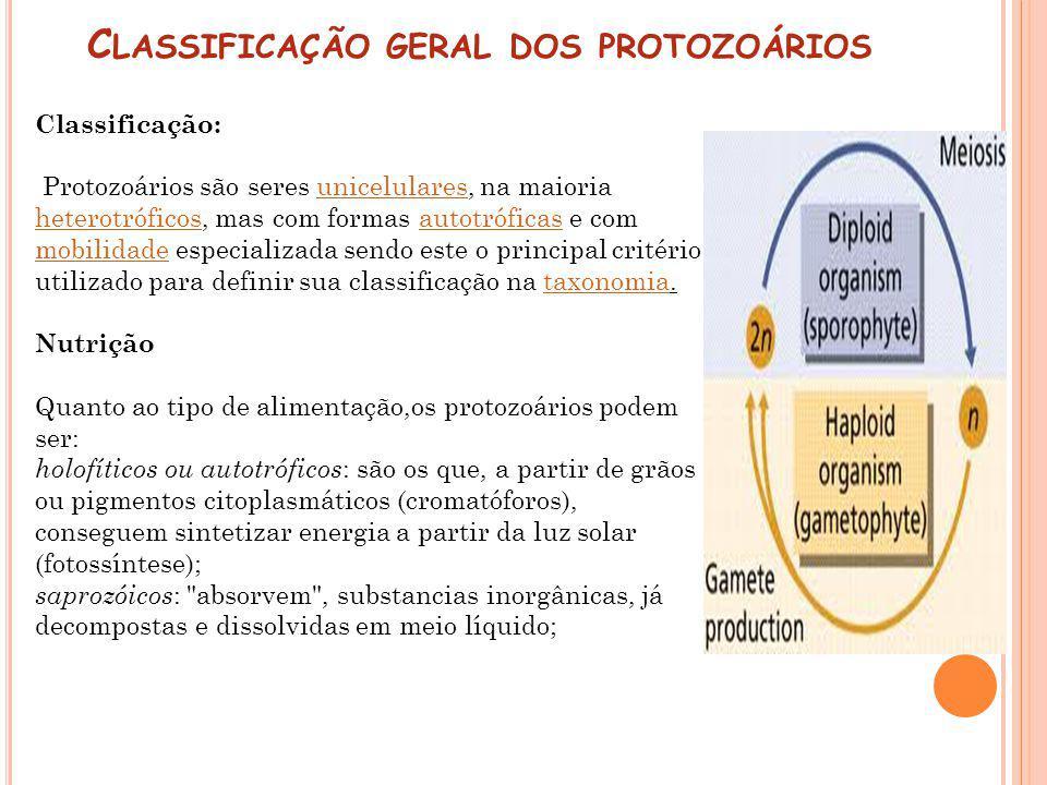 C LASSIFICAÇÃO GERAL DOS PROTOZOÁRIOS Classificação: Protozoários são seres unicelulares, na maioria heterotróficos, mas com formas autotróficas e com