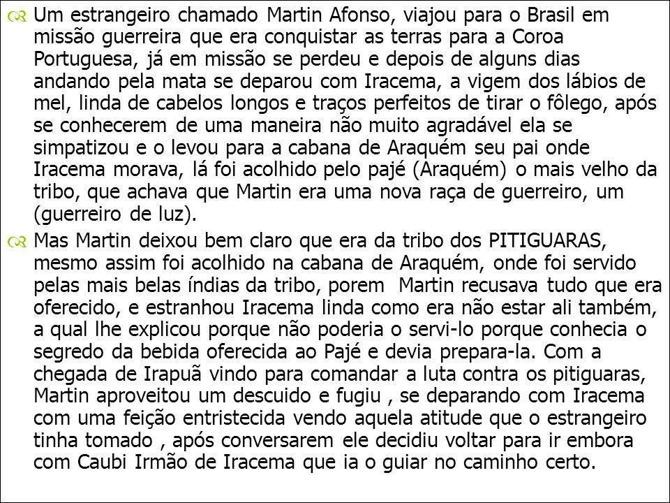 Um estrangeiro chamado Martin Afonso, viajou para o Brasil em missão guerreira que era conquistar as terras para a Coroa Portuguesa, já em missão se p