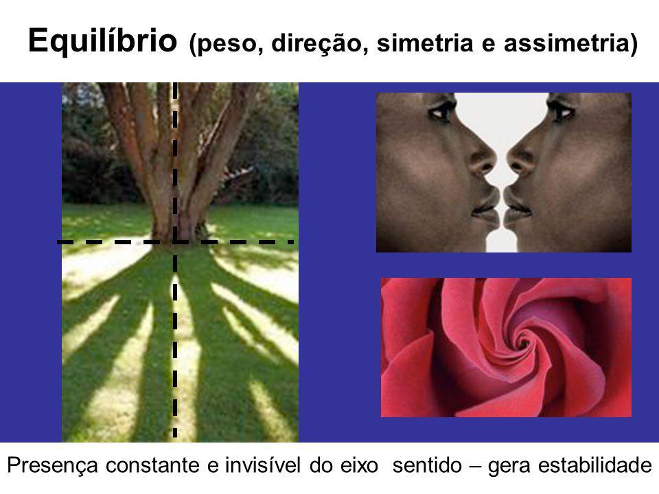 Equilíbrio (peso, direção, simetria e assimetria) Presença constante e invisível do eixo sentido – gera estabilidade