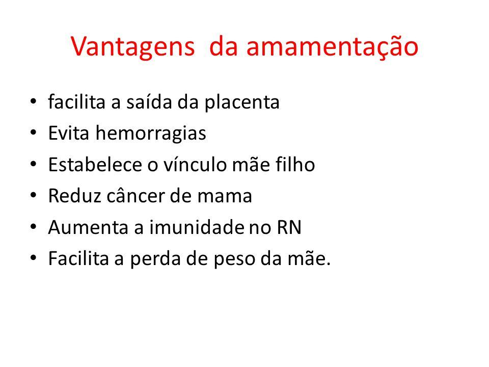 Vantagens da amamentação facilita a saída da placenta Evita hemorragias Estabelece o vínculo mãe filho Reduz câncer de mama Aumenta a imunidade no RN