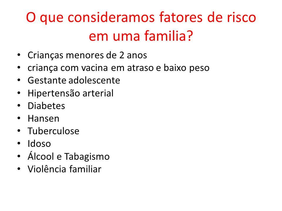 O que consideramos fatores de risco em uma familia? Crianças menores de 2 anos criança com vacina em atraso e baixo peso Gestante adolescente Hiperten