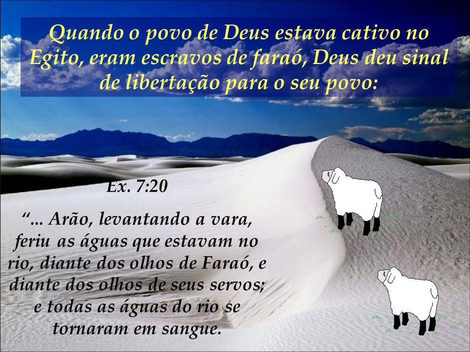 ... Arão, levantando a vara,... as águas do rio se tornaram em sangue. Ex. 7:20