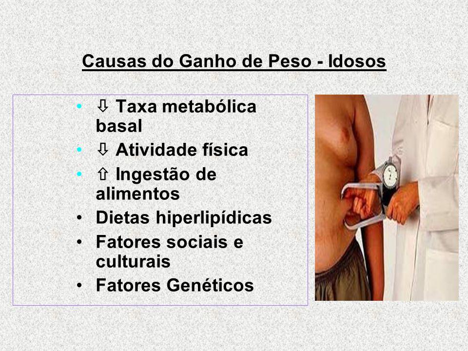 Causas do Ganho de Peso - Idosos  Taxa metabólica basal  Atividade física  Ingestão de alimentos Dietas hiperlipídicas Fatores sociais e culturais Fatores Genéticos