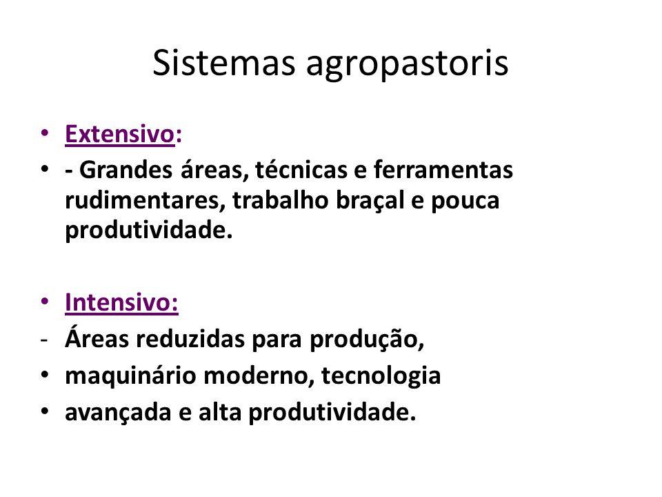 Sistemas agropastoris Extensivo: - Grandes áreas, técnicas e ferramentas rudimentares, trabalho braçal e pouca produtividade.