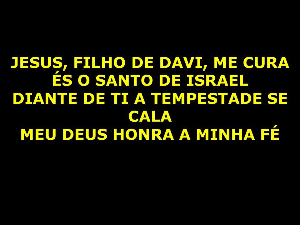 JESUS, FILHO DE DAVI, ME CURA ÉS O SANTO DE ISRAEL DIANTE DE TI A TEMPESTADE SE CALA MEU DEUS HONRA A MINHA FÉ