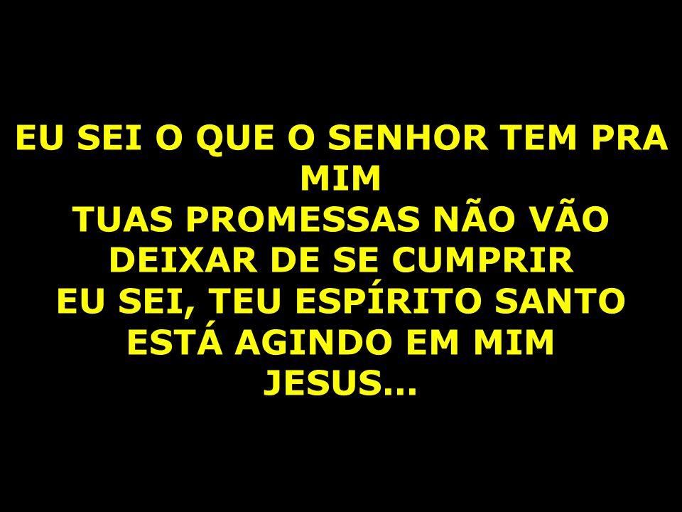 EU SEI O QUE O SENHOR TEM PRA MIM TUAS PROMESSAS NÃO VÃO DEIXAR DE SE CUMPRIR EU SEI, TEU ESPÍRITO SANTO ESTÁ AGINDO EM MIM JESUS...