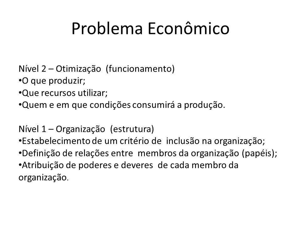 Problema Econômico Nível 2 – Otimização (funcionamento) O que produzir; Que recursos utilizar; Quem e em que condições consumirá a produção.