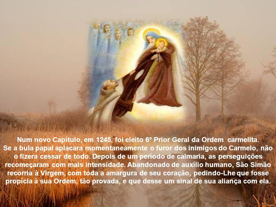 Simão enviou delegados ao Papa Honório III, para informá-lo da perseguição de que estavam sendo vítimas os carmelitas e pedir sua proteção.
