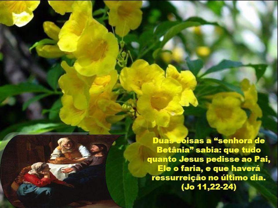 Caríssimos, Marta, descendente de reis, era filha de Ciro e Eucália, irmã de Maria e de Lázaro.