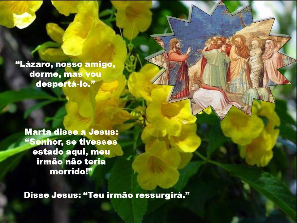Eu sou a ressurreição e a vida! CRÊS NISTO?