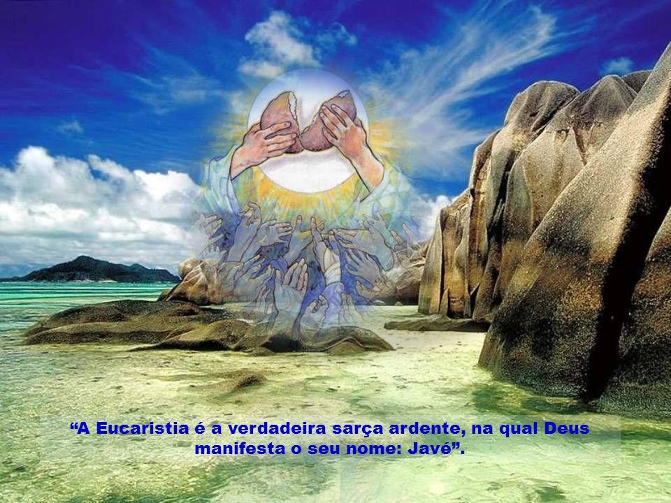 A Eucaristia é a verdadeira sarça ardente, na qual Deus manifesta o seu nome: Javé.