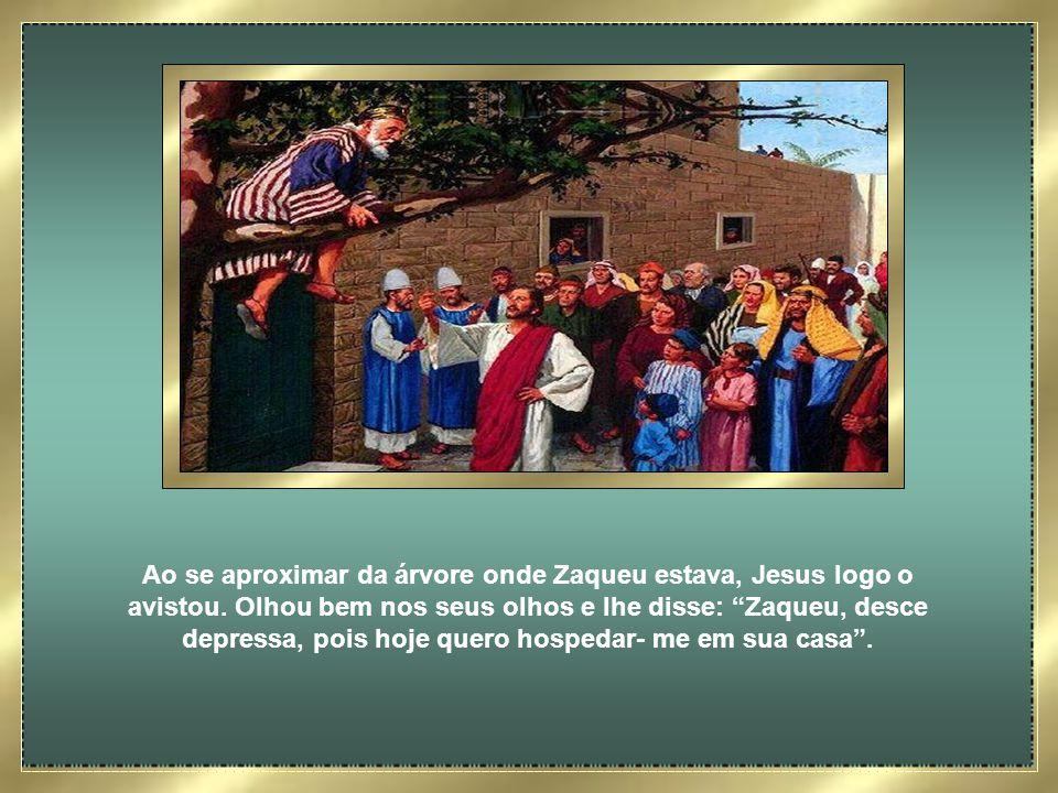 Zaqueu era um homem pequenino, de baixa estatura, e em meio a tanta gente queria ver Jesus, mas não conseguia. E como todos estavam na sua frente, aqu