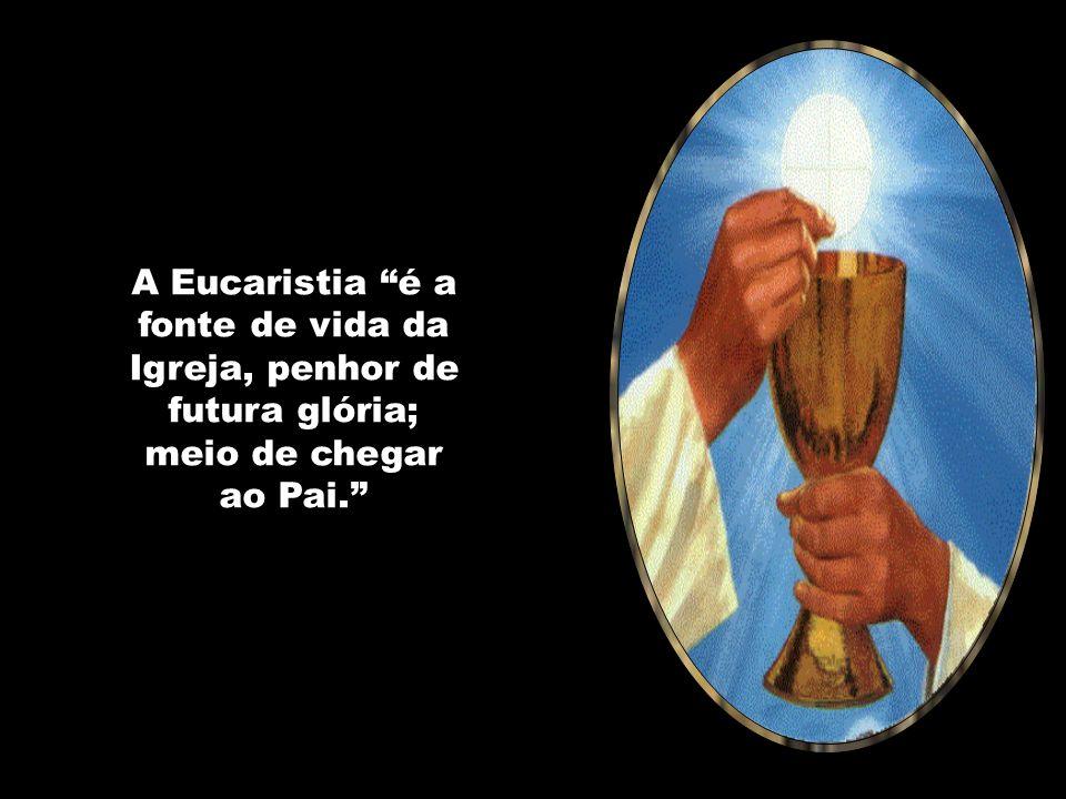 Caríssimos, os santos de ontem, de hoje e de amanhã são vencedores. São testemunhas do Cordeiro de Deus e sinais de santidade da Igreja. A Eucaristia