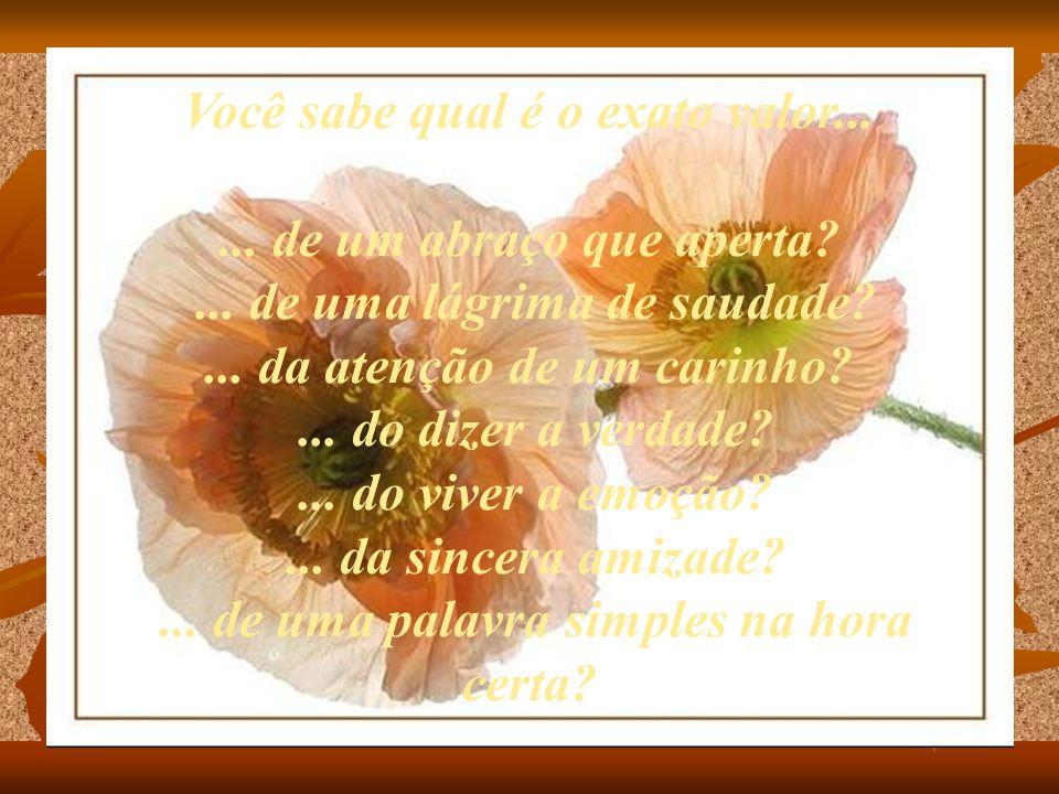 ... de uma flor pequenina, quando o romantismo invade?... do nascer do sol e de sua beleza?... da luz da lua longe da cidade?... do poder da prece, qu