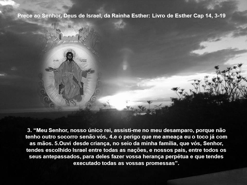 Prece ao Senhor, Deus de Israel, da Rainha Esther: Livro de Esther Cap 14, 3-19 3.