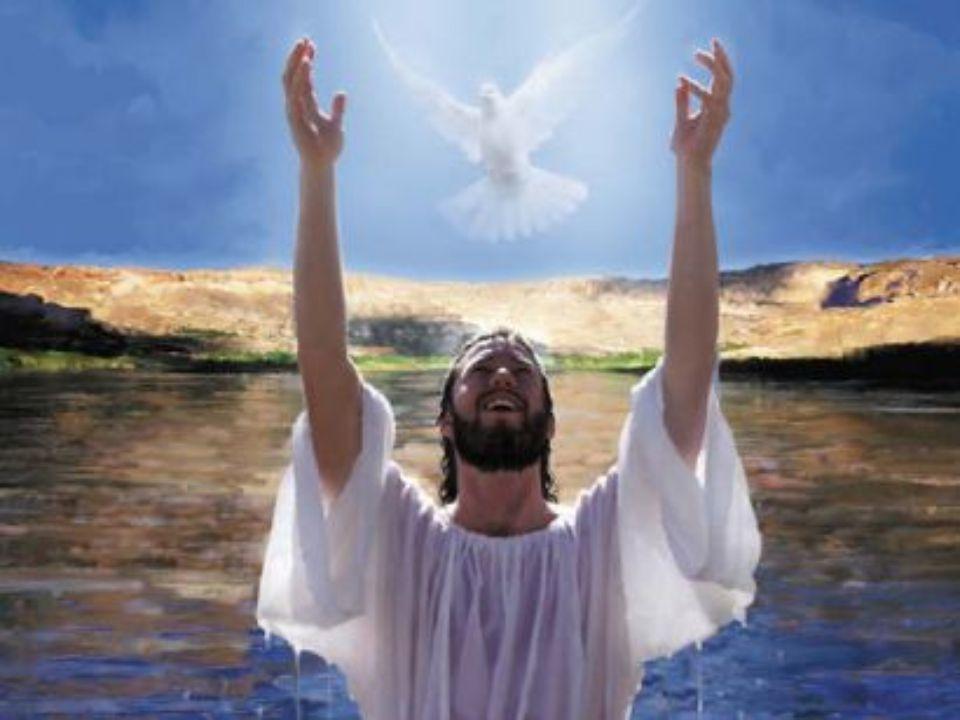 Pelo derramamento do Espírito os corações são elevados ao alto, os fracos são conduzidos pela mão, os que progridem na virtude chegam à perfeição. Vis