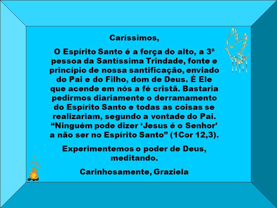Caríssimos, O Espírito Santo é a força do alto, a 3ª pessoa da Santíssima Trindade, fonte e princípio de nossa santificação, enviado do Pai e do Filho, dom de Deus.