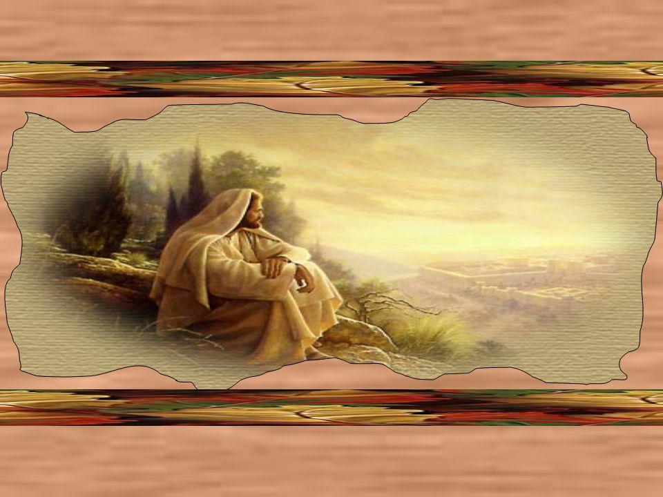 Maria, mãe de Jesus, rogue por mim para que como colaboradora de seu Filho, possa eu na fé e amor, propagar a sã doutrina de Jesus.