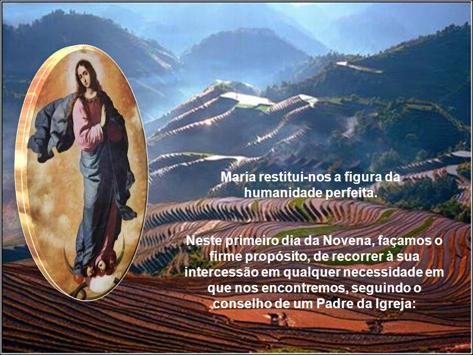 Maria restitui-nos a figura da humanidade perfeita.