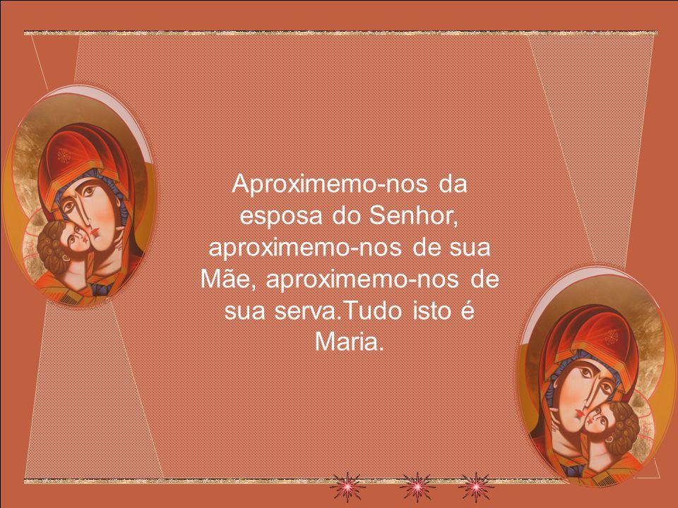 Aproximemo-nos da esposa do Senhor, aproximemo-nos de sua Mãe, aproximemo-nos de sua serva.Tudo isto é Maria.