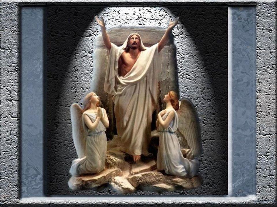 Vem, ó Trindade, Morada feliz.O céu inteiro te adora, Momento a momento ora.