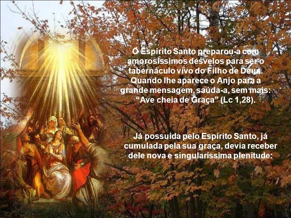 O Espírito Santo preparou-a com amorosíssimos desvelos para ser o tabernáculo vivo do Filho de Deus.