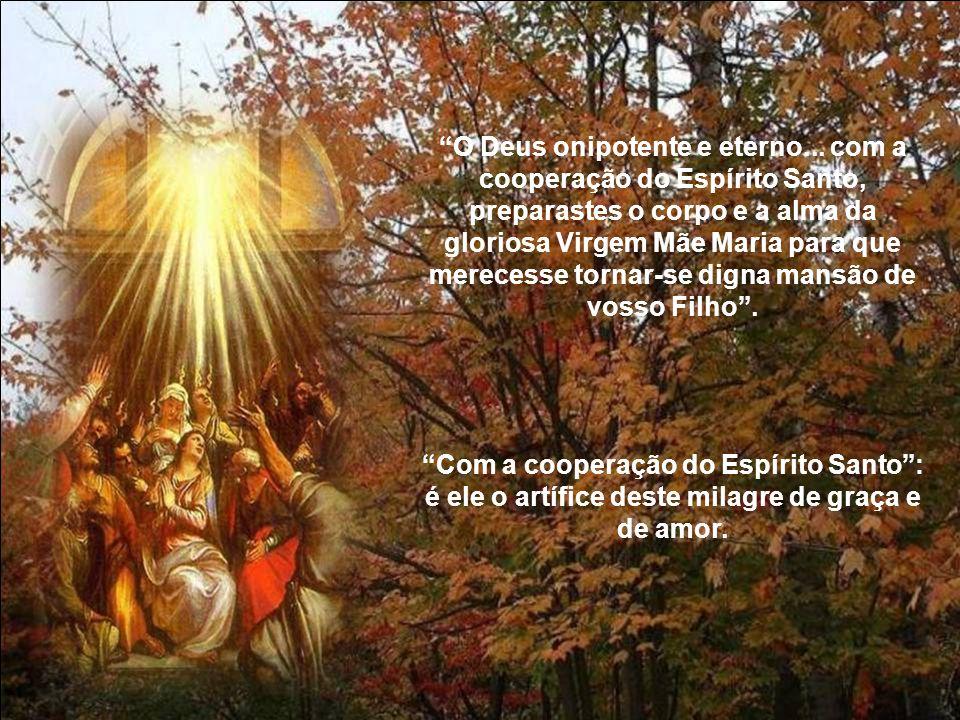 O Espírito Santo descerá sobre ti e a virtude do Altíssimo te cobrirá com sua sombra.