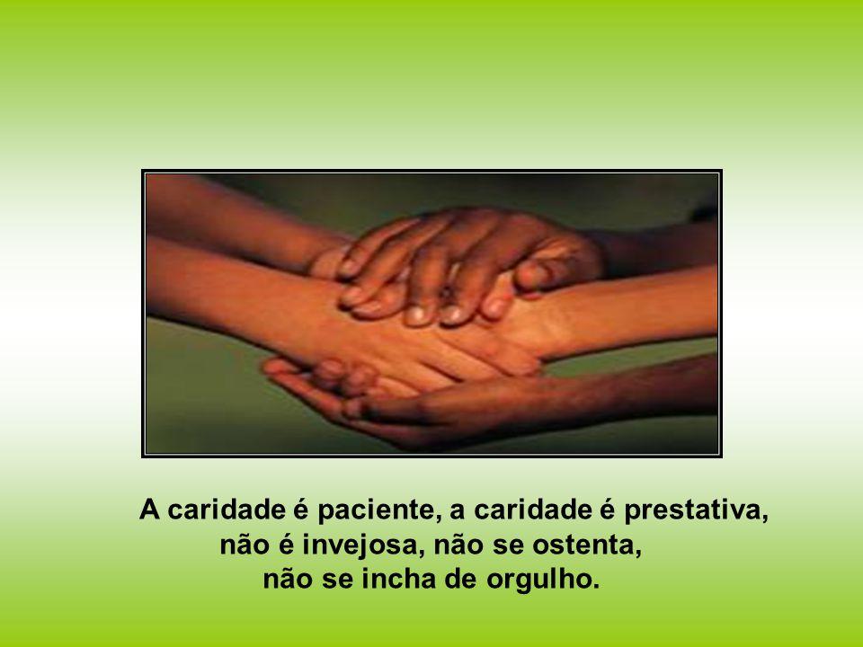 A caridade é paciente, a caridade é prestativa, não é invejosa, não se ostenta, não se incha de orgulho.