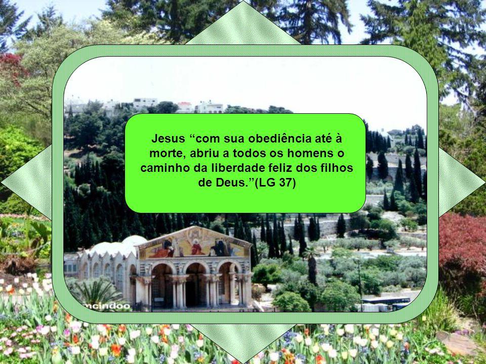 Jesus com sua obediência até à morte, abriu a todos os homens o caminho da liberdade feliz dos filhos de Deus.(LG 37)