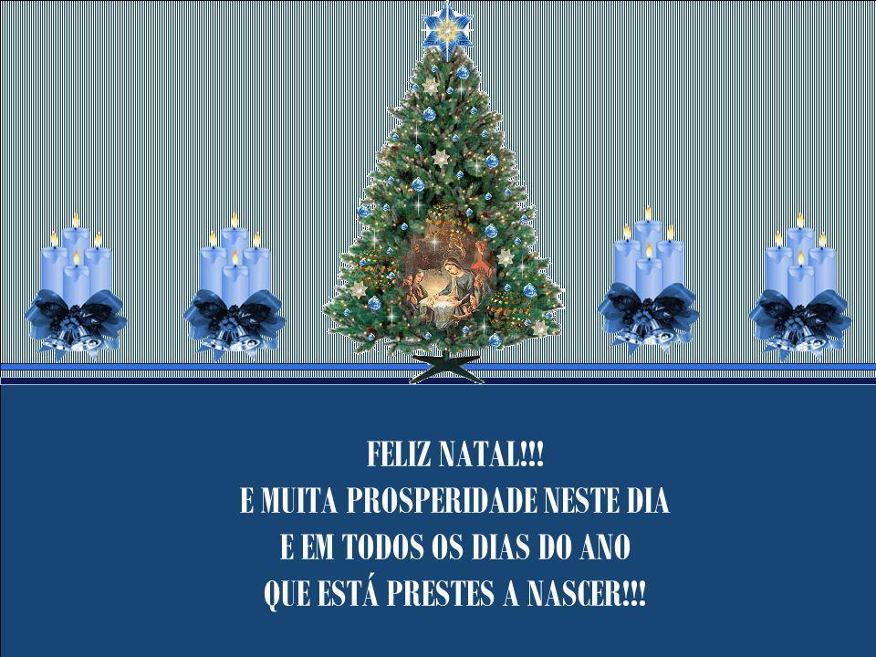 Enfim, o Milagre Natalino está no desejo de ser feliz de cada um. Pois Milagres existem sim, principalmente com tamanha benção de Deus. Muitas Glórias