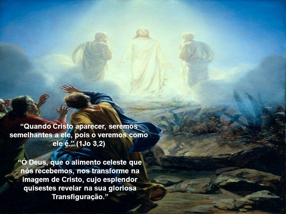 Quando Cristo aparecer, seremos semelhantes a ele, pois o veremos como ele é.