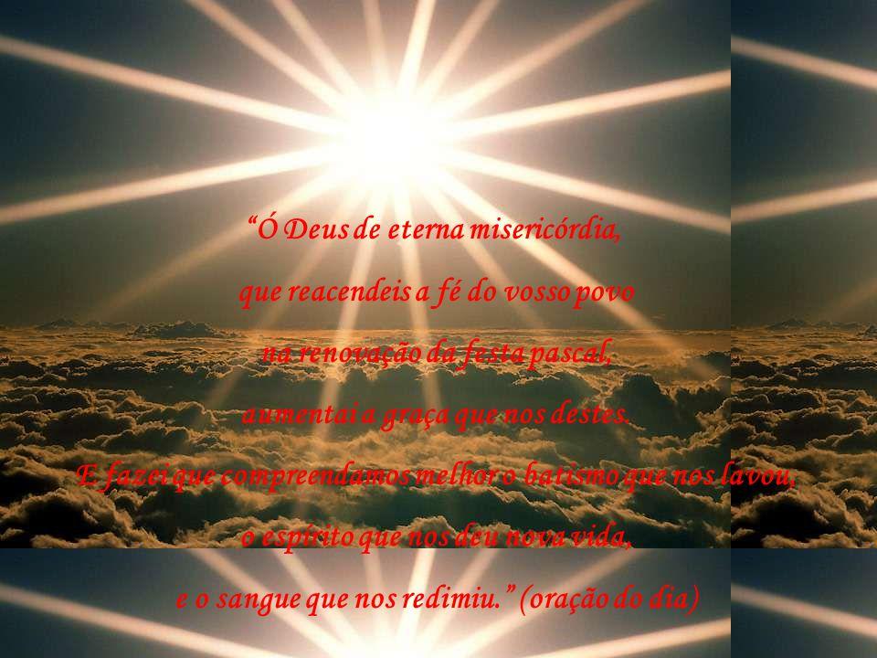 Caríssimos filhos de Deus, que esta Festa da Misericórdia seja para nós refúgio e abrigo no coração do nosso Deus, Pai amantíssimo e cheio de misericó