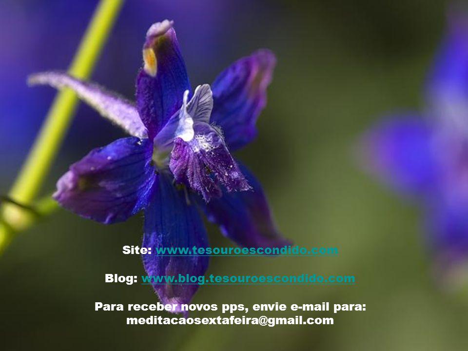 Texto – Revista Jesus Vive e é o Senhor nº 238– Abril/1998 Música – Tristesse - Chopin Imagens – Google trabalhadas Formatação - Graziela