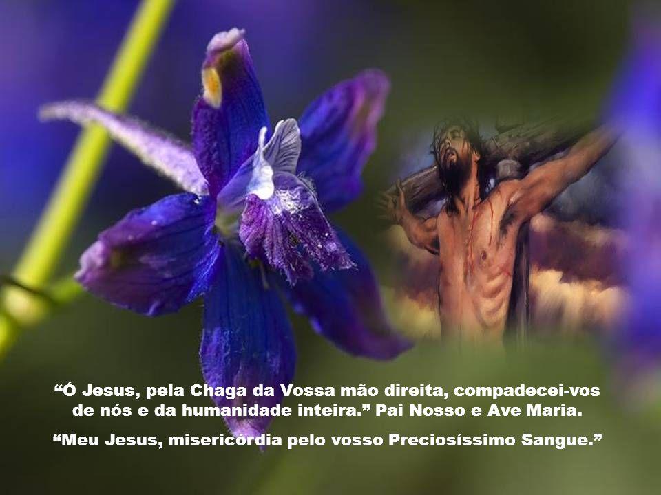 Caríssimos, Neste Tempo da Quaresma é-nos propício meditar nas Chagas de Jesus. O culto das Chagas, isto é, as feridas que Cristo sofreu e manifestou