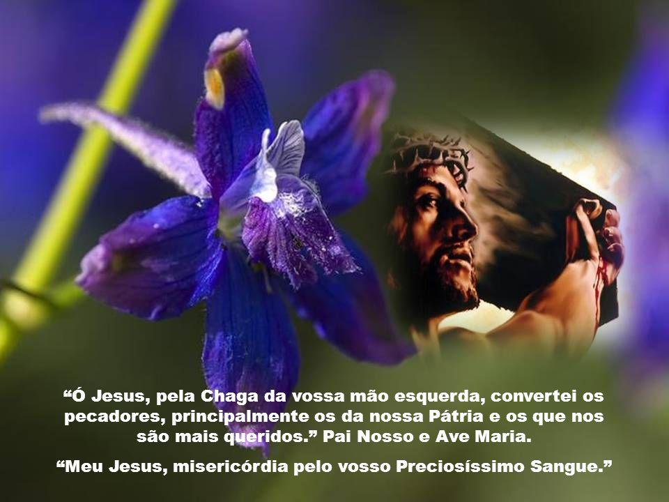 Ó Jesus, pela Chaga da Vossa mão direita, compadecei-vos de nós e da humanidade inteira. Pai Nosso e Ave Maria. Meu Jesus, misericórdia pelo vosso Pre