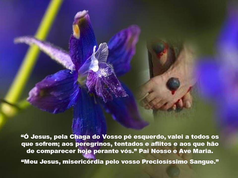 Ó Jesus, pela Chaga do vosso pé direito, guiai os nossos passos no caminho da vida e fazei que em tudo nos conformemos com a vossa Santíssima Vontade.