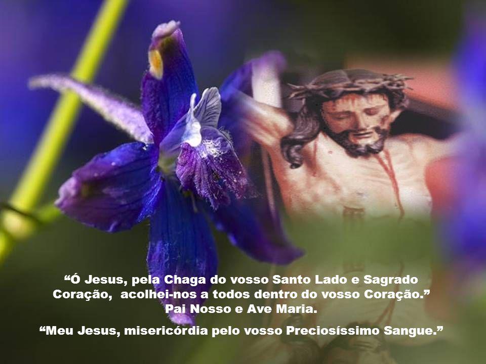 Ó Jesus, pela Chaga do Vosso pé esquerdo, valei a todos os que sofrem; aos peregrinos, tentados e aflitos e aos que hão de comparecer hoje perante vós