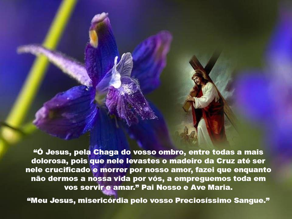 Ó Jesus, pela Chaga do vosso Santo Lado e Sagrado Coração, acolhei-nos a todos dentro do vosso Coração. Pai Nosso e Ave Maria. Meu Jesus, misericórdia