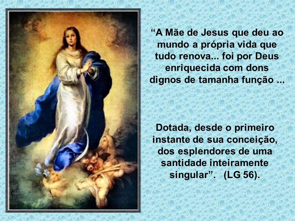 Não consiste o privilégio da Imaculada Conceição somente na ausência do pecado original, porém, mais ainda, na plenitude de graça. Maria mãe do Redent