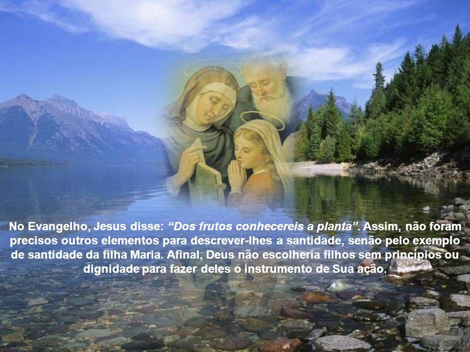 No Evangelho, Jesus disse: Dos frutos conhecereis a planta.