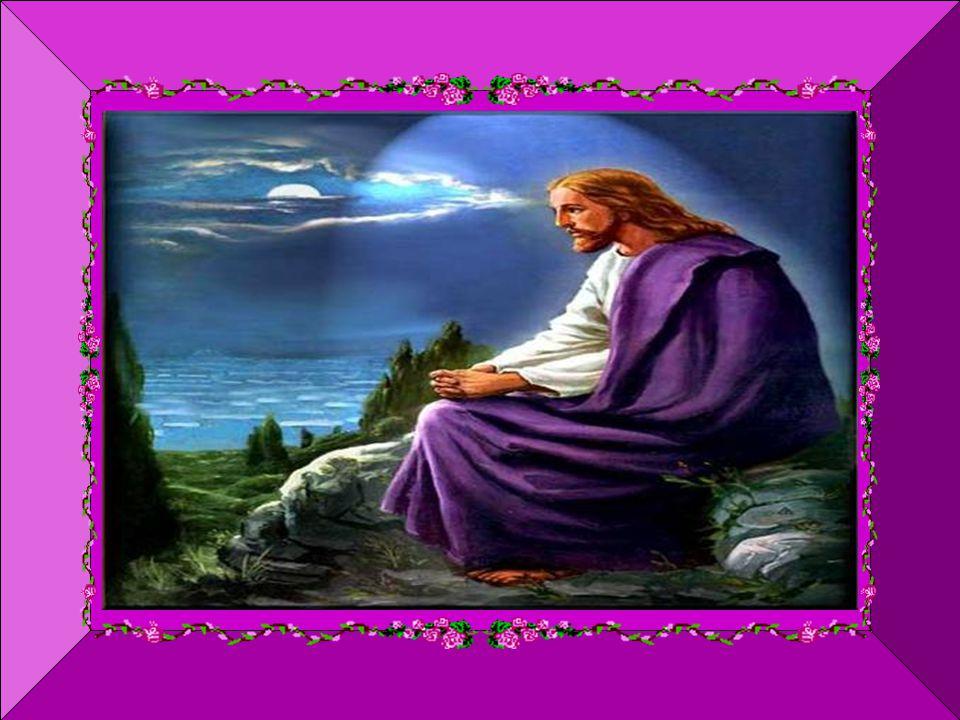Caríssimos, Hoje, 14 de setembro, a Igreja festeja a Exaltação da Santa Cruz.