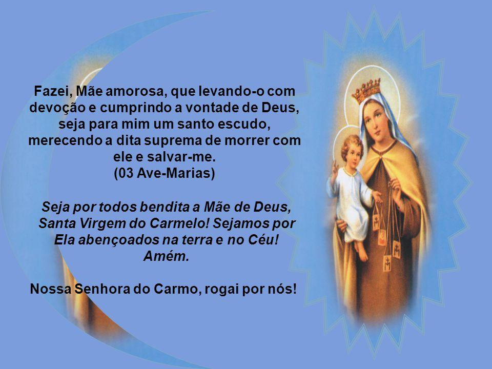 Oitavo dia Virgem do Carmo, Maria Santíssima! Uma das mais importantes graças de vossa Santo Escapulário é a que fizestes ao entregá-lo a São Simão St