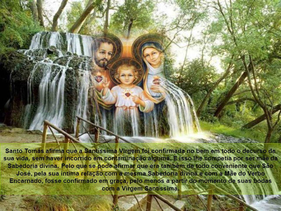 São José, confirmado em graça Pode-se ir mais longe: Como diz o Apóstolo: A cada um de nós foi dada a graça na medida do dom de Cristo (Ef 4, 7). Só C