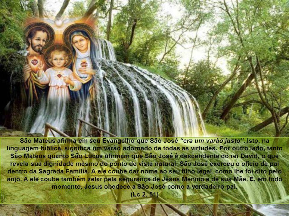 O que leva um teólogo a acrescentar que a Virgem Maria, como cheia de graça, esteve adornada de todas as virtudes, possuindo-as no grau mais perfeito de que seja capaz uma criatura.